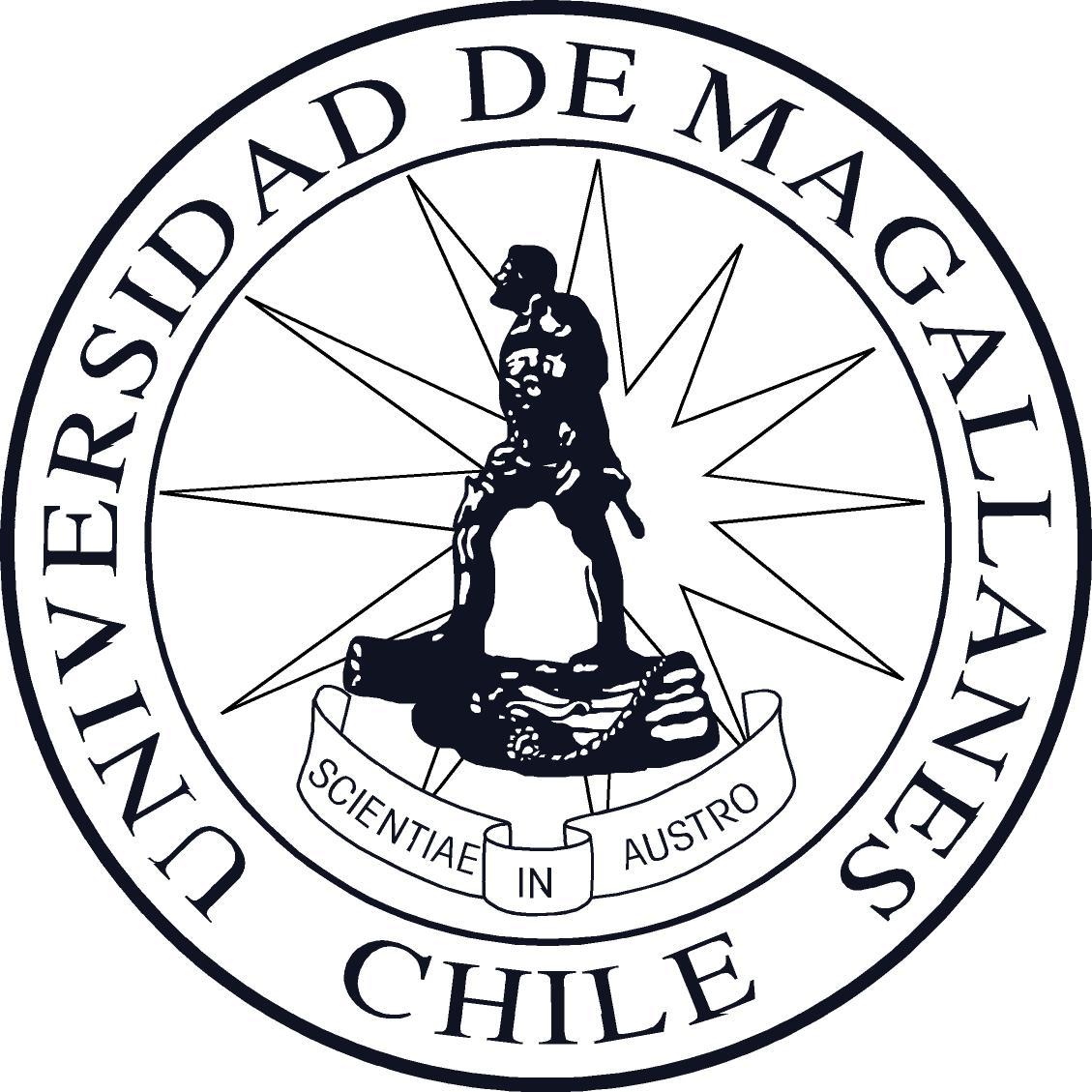 Logo UMAG 2013